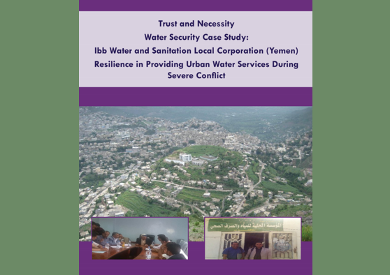 Frontpage manual: Ibb Urban Resilience - Case Study